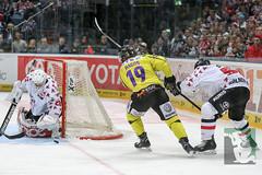 "DEL16 Kölner Haie vs. Krefeld Pinguine 17.01.2016 072.jpg • <a style=""font-size:0.8em;"" href=""http://www.flickr.com/photos/64442770@N03/24310775903/"" target=""_blank"">View on Flickr</a>"