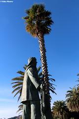 Finale Ligure (KikoPhotos) Tags: sky nature statue palms riviera blu walk lindo finale statua palme terso cielito marinero passeggiata delle ligure bronzo marinaio