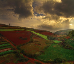 Red Path (MilaMai) Tags: china travel sunset red horse sunlight mountain tree nature field clouds rural landscape countryside amazing colorful asia path unique chinese hills 7d land kunming yunnan sunray redland dongchuan efs1022mm kiina canon1022 redsoil canon7d milamai