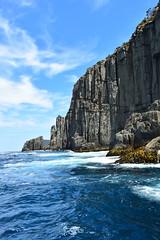 Dolerite sea cliffs (dracophylla) Tags: tasmania seacliffs tasmanpeninsula dolerite