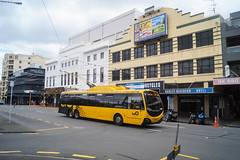 Kent Terrace (andrewsurgenor) Tags: city newzealand urban bus buses yellow electric busse transport transit nz wellington publictransport streetscenes omnibus trolleybus obus trolleybuses citytransport trackless nzbus gowellington