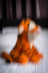 Outtake 52 Weeks 2016 - Week 6 Winnie the Pooh (Caroline Laj.) Tags: disney pooh tigger winnie bouncy flouncy trouncy
