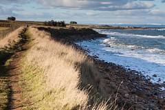 Fife coastal path north of Kingsbarns (EWin1) Tags: scotland fife kingsbarns fifecoastalwalk