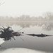 Mississippi Mist