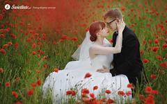 fotografia-slubna-swietliste-romantyczny-plener-maki