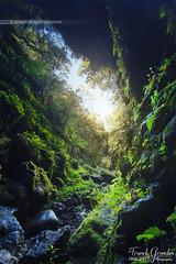 - Explore - (Frog 974) Tags: nature lumière ngc ravine sortie paysage citron grotte entrée sauvage vierge faille galet îledelaréunion