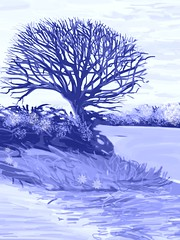 Blue tree, iPad painting.  (Possible wine label design.) (Plumkin) Tags: blue winter england tree english landscape design countryside winelabel plumovelgonne