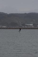 IMG_2574 (armadil) Tags: beach beaches mavericks kitesurfers windsurfers californiabeaches