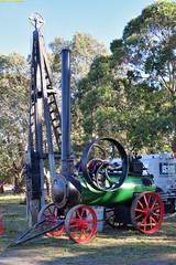 PE_Garrett_McLeansIsland_09April2016 (nzsteam) Tags: price train island traction engine railway scene steam engines locomotive boiler boilers mcleans sawmilling