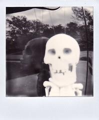 Skull with Reflection (ricko) Tags: reflection film polaroid skull scan roidweek2016