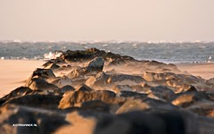 Dam near the Texel Lighthouse. #Texel #lighthouse #vuurtoren #strekdam #wadden #waddeneiland #canon #sigma #justin #sinner #pictures #holland #beach #strand nature #natuur #noordholland #noordzee #northsea #netherlands #seascape #sea #zee #kust #coast (JustinSinner.nl) Tags: pictures justin sea lighthouse seascape holland beach nature netherlands strand canon coast wadden waddeneiland near dam noordzee natuur sigma zee northsea vuurtoren sinner texel noordholland kust strekdam texels