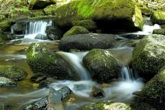 (becci.wassmundt) Tags: creek bayern bavaria waterfall wasserfall stones natur steine bach fluss moos sausbachklamm