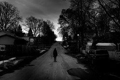 the.living (jonathancastellino) Tags: street leica trees shadow dog ontario tree standing walking stand dramatic figure distance drama figures abyss queenston theliving