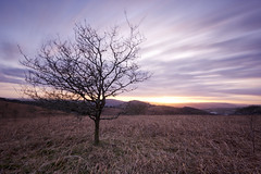 Mountain Sunset (The6millionpman) Tags: longexposure sunset sky mountain tree nature wales clouds landscape outdoors nikon sigma neutraldensity ndgradfilter nd1000filter nikond5200