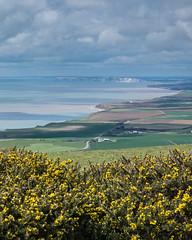 The Military Road, Isle of Wight - DSCF7826 (s0ulsurfing) Tags: nature coast fuji natural coastal april fujifilm coastline isle wight 2016 s0ulsurfing xt1