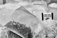 Iced Tea (HMM) (WilliamND4) Tags: blackandwhite bw macro ice bag blackwhite nikon tea d750 hmm teabag tokina100mmf28atxprod macromonday tokina100mmf28lens nikond750