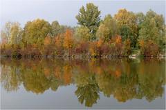 Herbst am Teich 25 (lady_sunshine_photos) Tags: austria europa herbst teich niedersterreich oase weinviertel herbstfrbung nexing