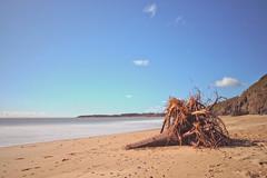 Washed Ashore (Colin Kavanagh) Tags: longexposure ireland sea sky cliff sun seascape beach water sunshine canon landscape sand bluesky treetrunk tamron wicklow arklow irishsea nd10 700d