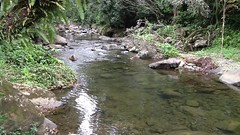 Charco Frio-Rio Tinajas (elnenerakoon92) Tags: fajardo