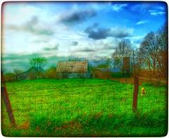 All we ever needed... (Sherrianne100) Tags: barn fence cross farm firehydrant missouri ozarks oldbarn awardtree barnwithcross