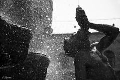 Piazza duomo, dettaglio. Trento (Fede Z.) Tags: blackandwhite bw water fountain drops trento duomo acqua fontana biancoenero gocce