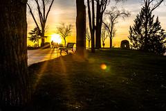 Art Sunset - V2 (Juaberna) Tags: sunset art sol yellow 35mm de landscape nikon shadows 14 sigma puesta d610