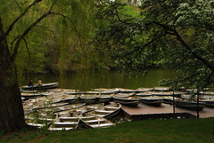Central Park Nigel and boats (juan tan kwon) Tags: trees boats tulips centralpark nigel sanremo mannion lpq