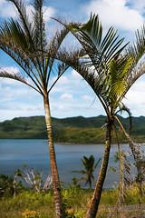 _MG_4991 (Rickard Nilsson) Tags: travel sea nature fiji island village pacific south vitilevu archipelago pacificisland pacificislands viti