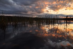Cloudy Sunset (FlorDeOro) Tags: sunset sun lake reflection nature water grass clouds landscape photography evening spring nikon colorful sweden rays nikkor d90 mijarajc