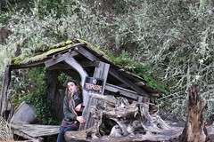 If I Wait Here (cameliarose93) Tags: winter woman selfportrait forest writing hope cabin shed dreams trespass mermaid longing 365project