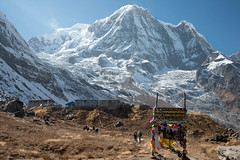 ABC (Pooja Pant) Tags: nepal mountains beautiful trek abc annapurna annapurnabasecamp macchapuchre