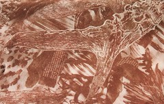 Antler digital collage 3 (ritchie.callum) Tags: brown nature digital photoshop photo colours background deer clone invert antler callumritchie