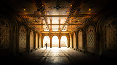 Bethesda Terrace, Central Park NYC (FotoByOliver) Tags: park new york city nyc winter urban usa lake ny west architecture night stairs contrast nikon cityscape terrace manhattan side central arcade grand wideangle symmetry east upper staircase symmetrical gothamist gotham bethesda magnificent centralparknyc d7100