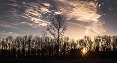 Bucher Forst (trekkpics) Tags: travel holiday berlin buch see tiere meer wasser sonnenuntergang outdoor urlaub himmel wald reise bucher forst heiter colourartaward