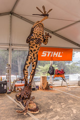 Chainsaw competition at Sky High, Mt Dandenong (Paddock Without A Fence) Tags: wood chainsaw australia melbourne victoria carving stihl