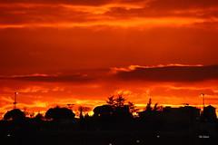 45/52 - Atardecer naranja (Filo Schira) Tags: sunset orange atardecer horizon cielo puestadesol crpuscule naranja horizonte anochecer coucherdesoleil crepsculo