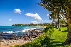 untitled-1733 (PortugePunk) Tags: travel vacation beach landscape hawaii us waves unitedstates maui lahaina napili