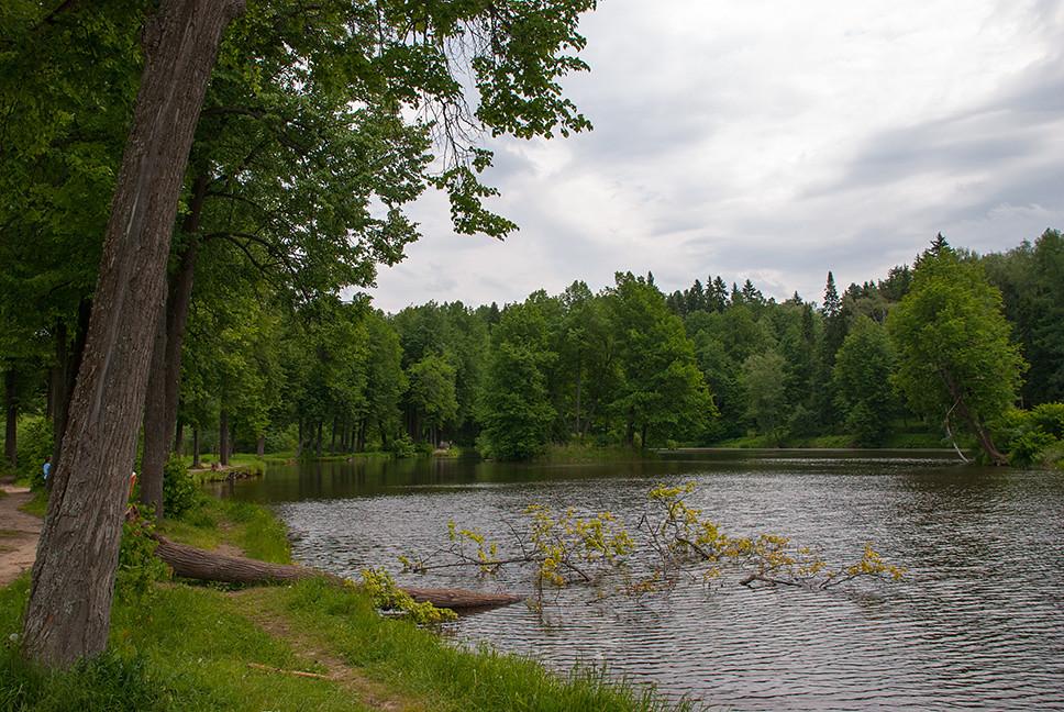 фото: Serednikovo