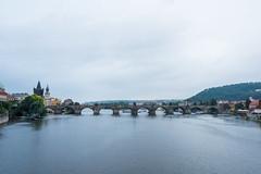 View from Manes Bridge, of St Charles Bridge, Karlv Most, Mnesv most,. Vltava River, Prague, Czech Republic (Kris McNeil) Tags: bridge st river republic czech prague charles most vltava karlv