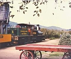 Ready for the off. (pyewacket947) Tags: california railroad usa santacruz transport loco steam shay felton no1 narrowgauge dixiana roaringcampbigtrees
