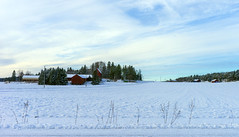 White as winter (Joni Mansikka) Tags: road blue trees winter sky white nature clouds rural woodland suomi finland landscape countryside outdoor fields sheds paimio