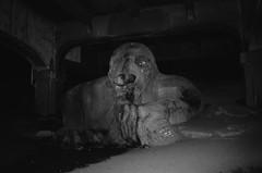 Seattle (Invisible Hour) Tags: california ca leica bw white black color film cali los angeles velvia fujifilm neopan fujichrome m6 acros 100iso
