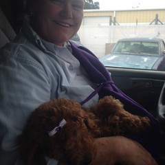 Ruby's Sadie loves riding on her mom's lap!