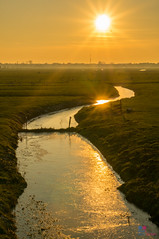 Sunset over the meadow (Tony Kanev) Tags: reflection zonsondergang weide ditch meadow sloot flickrunitedwinner