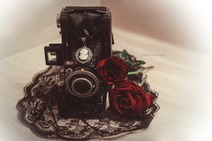 Gothic Obscura (Kelly McCarthy Photography) Tags: camera flowers roses stilllife flower vintage necklace lace gothic jewelry retro cameo choker