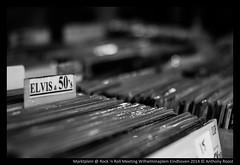 Rock 'n Roll Meeting Wilhelminaplein Eindhoven 2014-8 (Thoon_Loque) Tags: musician music netherlands festival photography concert fotografie live stage nederland eindhoven muziek anthony rocknroll concertphotography brabant roost noord wilhelminaplein 2014 marktplein rocknrollmeeting anthonyroost fothoonnl