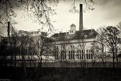 The Pilsner Urquell Brewery (michael.mu) Tags: leica blackandwhite bw monochrome sepia 35mm czech pilsen pilsnerurquell m240 plze leicasummicron35mmf20asph silverefexpro leicasummicronm1235mmasph plzeskprazdroj