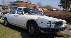 Jaguar XJ6 4.2 1978 (XBXG) Tags: auto old uk england france classic car vintage automobile champagne voiture des salon british 1978 51 jaguar frankrijk reims 42 engeland belles ancienne xj marne xj6 ardenne anglaise jaguarxj dépoque 29ème champenoises cv577zs
