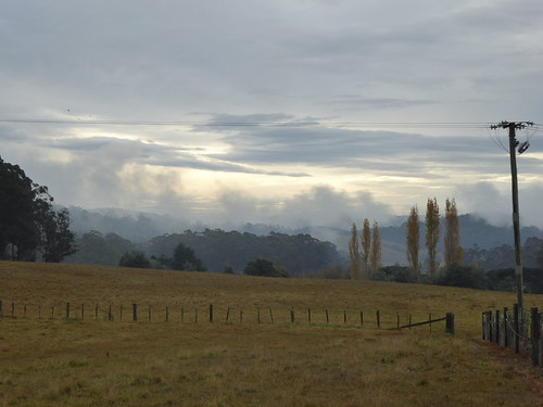 Autumn mist again
