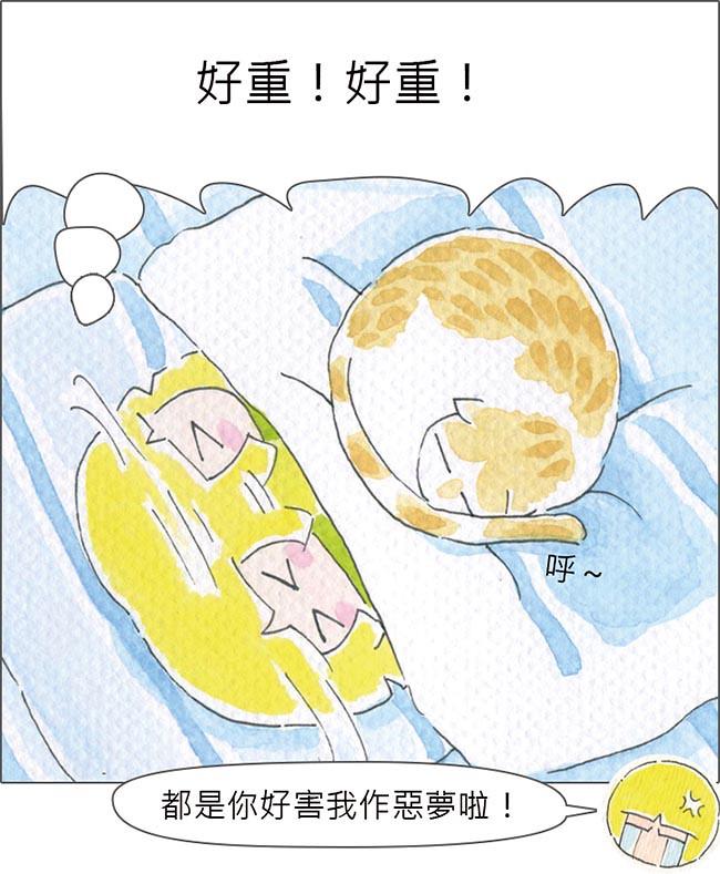 家裡來了一隻貓 海嘯